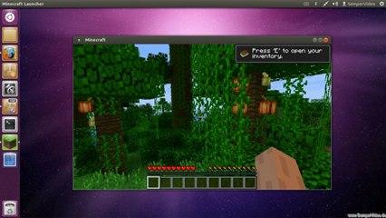 Ubuntu: Minecraft installieren
