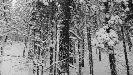 Yosemite en invierno