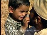 Gujarat-Gir-DVC-5-5.mov