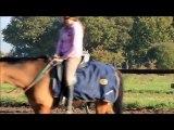 L'équitation plus qu'un sport