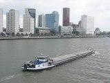Rotterdam, Pays-Bas : bateau et gratte ciel