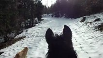 28 12 001 Promenade cheval dans la neige