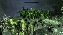 TES V: Skyrim - BASE Jumping in Skyrim