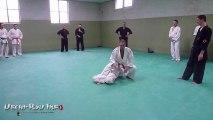Stage de Uechi-Ryû et de Ju-Jitsu - décembre 2012 - Amiens - France