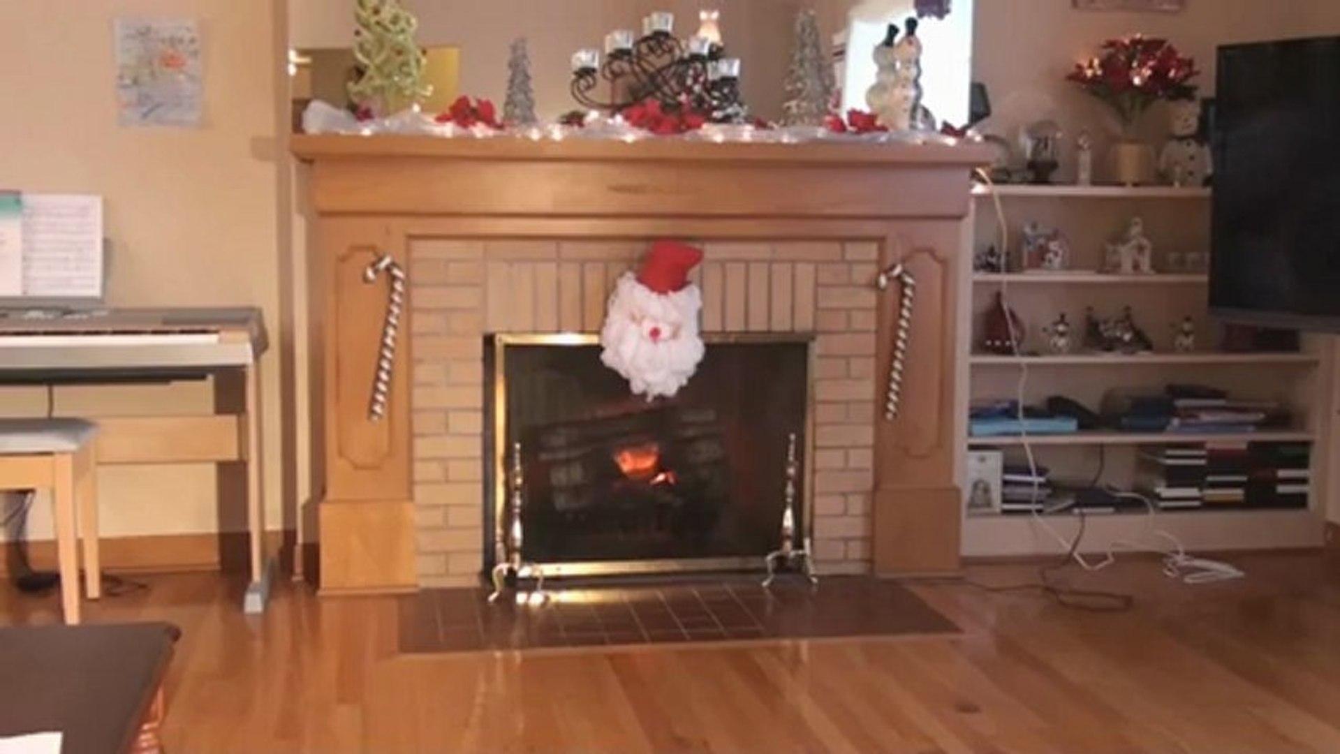 Fantastic Dimplex Electric Fireplace Insert Model Df3033 St Interior Design Ideas Tzicisoteloinfo