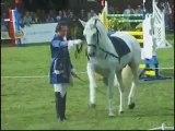 Des équitations...un même plaisir...merci cheval !