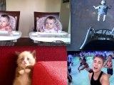 Buzz 2012 : Les vidéos les plus vues de l'année !