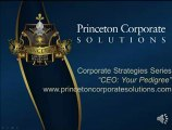 Princeton Corporate Solutions llc