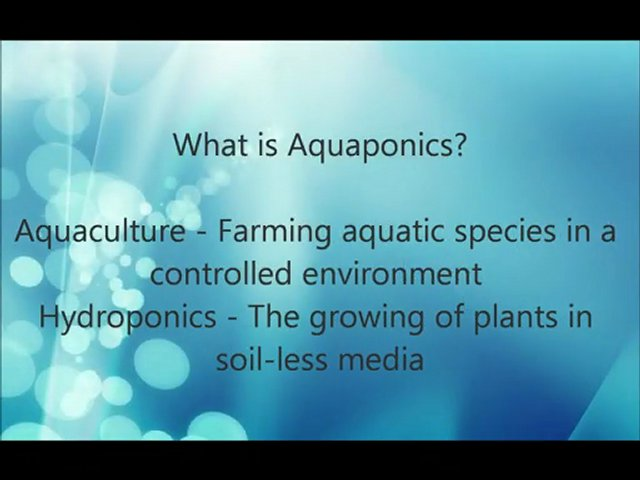 Backyard | Indoor Aquaponics