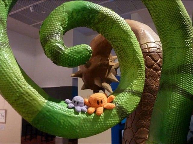 """Poulp visite l'exposition """"parce Queue"""" (Muséum-Aquarium de Nancy)"""