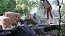 Trailer: Les Bêtes du Sud Sauvage de Benh Zeitlin VOstFR