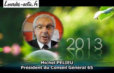 Voeux de Michel PELIEU 2013