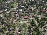 Typhon Bopha : des images aériennes montre la dévastation aux Philippines
