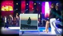 Laurent Voulzy @ Ma seule amour - La Fête de la chanson française  11.01.2013 @Dom