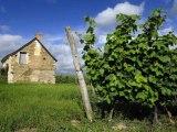 rezavacances locations de vacances en Pays-de-la-Loire