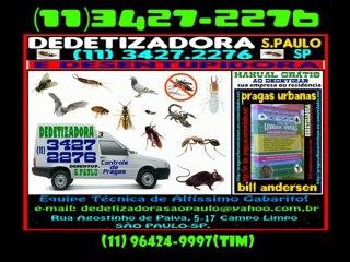 DEDETIZAÇÃO São Paulo 11 3427 2276 ou 96424 9997 tim
