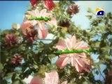 Ajdad mere Rasool Kay 5th Rabil ul Awal Special Program with Aamir Liaquat  Part 2 (2013)