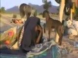 Mali,Contamination à l'uranium,découvrez les vrais terroristes,édifiant !