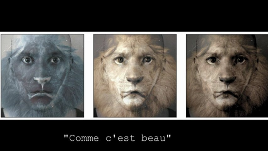 """PyT - Trailer de l'album """"Carnet d'un visage de pluie"""" - Sortie mars 2013"""