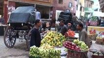 LOUXOR - Promenade en calèche - Égypte