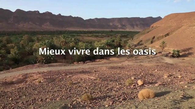 Mieux vivre dans les oasis