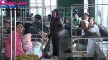 Bệnh viện Ung bướu Nghệ An: Ứng dụng công nghệ cao đảm bảo ANTT