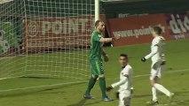 Chamois Niortais (NIORT) - Stade Lavallois (LAVAL) Le résumé du match (22ème journée) - saison 2012/2013