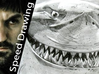 AMAZING! Shark Bruce speed drawing version! Must watch!