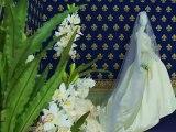 expo robes de mariées à Haroué