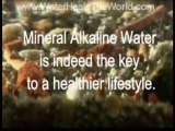 Ionized Alkaline Water Benefits (Water Ionizer System)