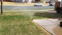 Monument Colorado-Sprinkler-Maintenance-Sprinkler-Repair-Sprinkler-Inspection-Startup-Blowout-Irrigation-System-Winterization-Activation-Colorado-Springs-CO-719-963-6267