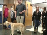 Schools try dogs, recess to help stressed teens