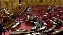 Projet de loi - élection des conseillers départementaux - Interventions du Sénateur-Maire, Philippe Kaltenbach