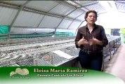 1 de Febrero de 2013 Conejera Los Alisos web (1)