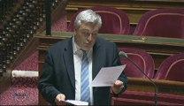 Questions orales-Transports parisiens-29012013