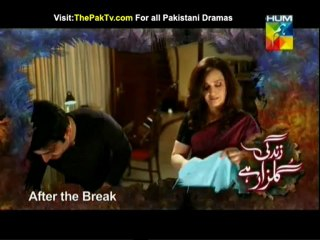 Zindagi Gulzar Hai Episode 11 - February 8, 2013 - Part 2