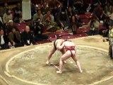 37ième Tournoi de Sumo à Tokyo - Combat de Sumo 2