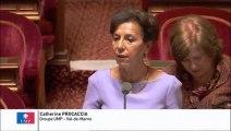 Catherine Procaccia, Sénateur du Val-de-Marne : Mise en place d'un tarif opposable pour les consultations de gynécologie des étudiants