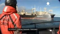 Sea Sheperd défie les baleiniers japonais - no comment