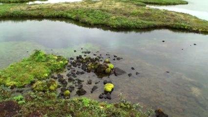 Taumhaftes Island (Teil 2)
