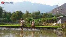 Une nouvelle saison de riz - Voyage au Vietnam, Voyage Vietnam, Trekking au Vietnam, Trek au Vietnam