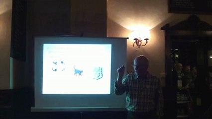 Brian Quinn - Superstition: The Odd Delusion