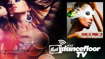 Tim Sanchez - Can U Feel It - Original Mix - YourDancefloorTV