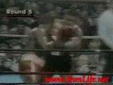 boxeo Mike Tyson MMA-Pride-k1-Ufc