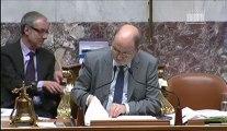 François de Mazières - Art. 8 - Amdt 737 - Projet de loi relatif à l'élection des conseillers départementaux, des conseillers municipaux et des conseillers intercommunaux, et modifiant le calendrier électoral - 2nd séance du 22 février 2013