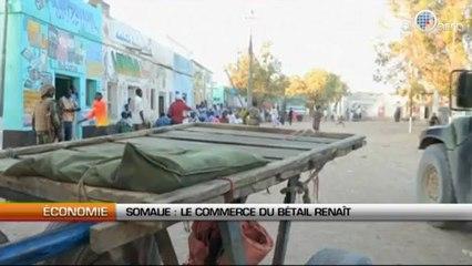 Somalie : Le commerce de bétail renaît