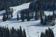 Hiver : ski de fond / ski alpin