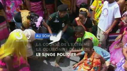 Sommaire émission 30 Millions d'Amis 2/3/2013