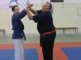 Défense contre menace avec couteau inversé à la gorge (Rambo) par le professeur Dave Castodi (10° dan)