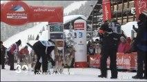 La Grande Odyssée Savoie Mont Blanc sur France 3 - 30 millions d'amis